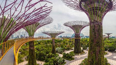 معماری پایدار در شهر جنگلی سنگاپور