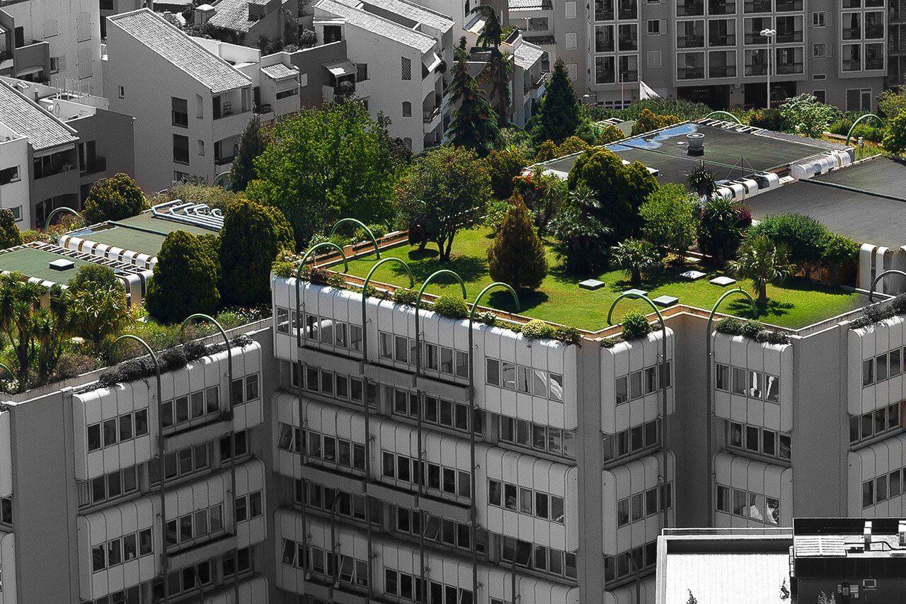 تصویری از بام سبز را نشان می دهد که در پشت بام هتل فضای سبز پیاده سازی شده است.
