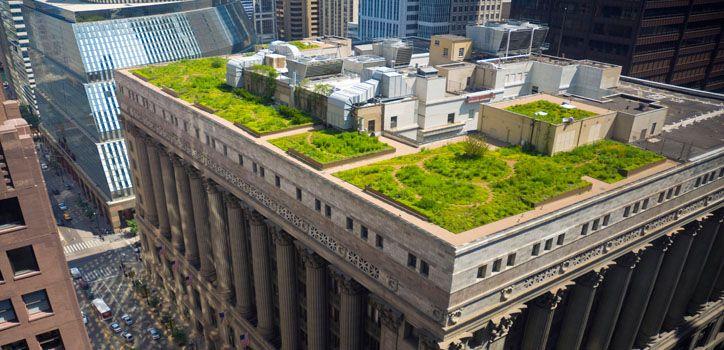 فضای سبز هوشمند با زوریل