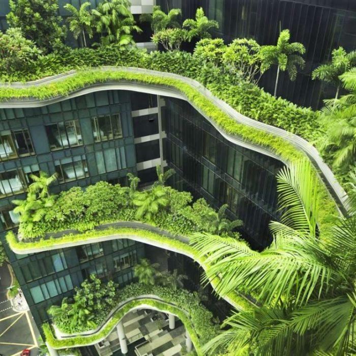 معماری پایدار | ایده طراحی معماری پایدار (بخش ۲) |