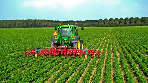 تصویری از یک تراکتور هومشند که در حال شخم زدن زمین کشاورزی سرسبزی است.