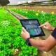 تصویری از سیستم آبیاری هوشمند در زمین کشاورزی را نشان می دهد که کاربر با تبلت هوشمند در حال کنترل این سیستم می باشد.